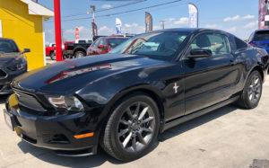 Mustang Dallas Tx